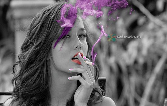 foto-sigaretyi-zaharova-zaklyuchenie