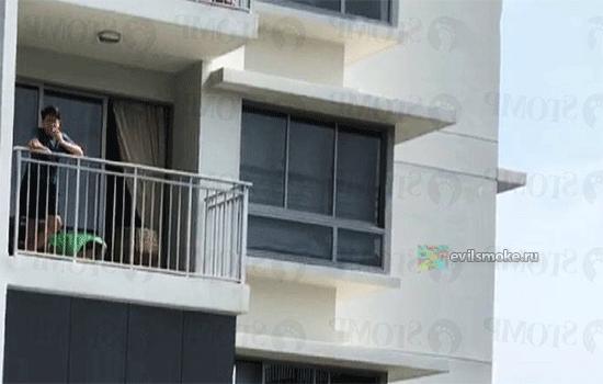 foto-okurki-pod-balkonom-kak-borotsya