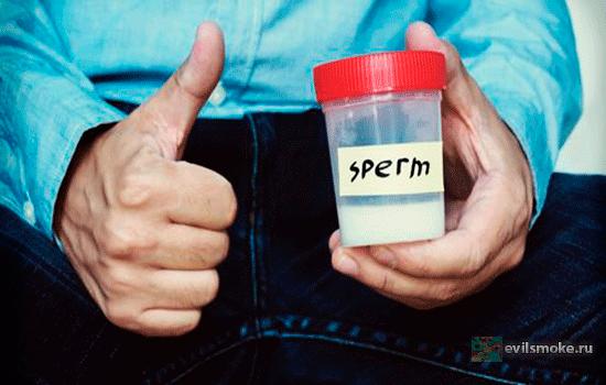 foto-kurenie-i-spermatozoidyi-otkaz-ot-kureniya