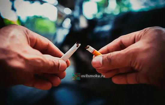 Фото - Сломали сигарету