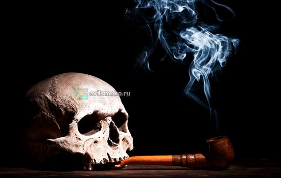 Фото - Курящий череп