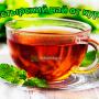 Фото - Чашка чая