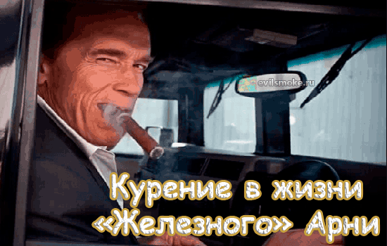 Фото - Шварщенеггер с сигарой за рулем